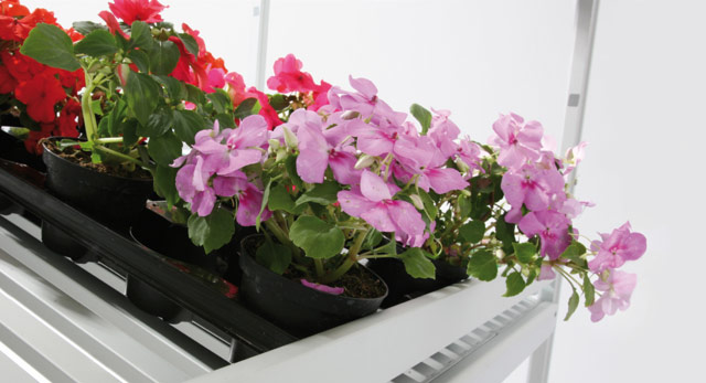 Trolleys: flower shop rolling shelves
