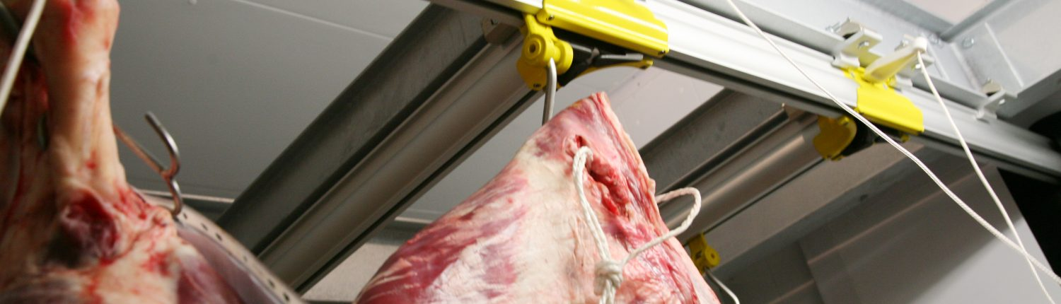 Overhead rail system with meat hanging hooks